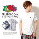 Tシャツ ロゴ ワッペン メンズ 無地Tシャツ FRUIT OF THE LOOM 半袖 フルーツオブザルーム Sサイズ XLサイズ シンプル ワンポイント パックT 綿 コットン ss