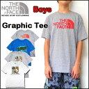 ノースフェイス キッズ Tシャツ THE NORTH FACE BOYS GRAPHIC TEE ジュニア ロゴ