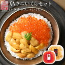 【ご予約受付中】うに ウニ 生キタムラサキウニ 90g+昆布だしイクラ 60g セット日本最北の島 北海道 礼文・利尻島産…