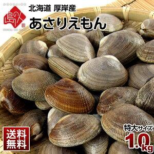 北海道 厚岸産 ごろっと殻付特大あさり 1.0kg(あさりえもん)獲れたてをお届け【送料無料】【砂出し済】みそ汁、パエリア、酒蒸しにブランドあさり 浅利 北海道 貝 お取り寄せ 海鮮 産地直送