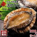 礼文・利尻島産 活エゾアワビ L〜LLサイズ 300g(3〜4個) 北海道 お土産 お取り寄せ ギフトあわび アワビ 貝 活