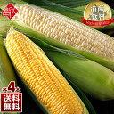 北海道産 とうもろこし ゴールドラッシュとピュアホワイト(L〜2L) 各4本 食べ比べセット生で食べても甘い!【送料無料…