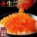 【10月1~2日お届け】\衝撃の食感/未冷凍 獲れたて生いくら 鮭 醤油漬け 300g (150g×2)北海道 斜里産【送料無料】…