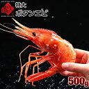 特大ボタンエビ 2Lサイズ 500g 9-11尾北海道 お取り寄せグルメ 牡丹海老 えび 海老 食品 食べ物 海鮮 海産物 バーベキ…