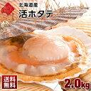 活きたまま届く!北海道産 活ホタテ【送料無料】 2.0kg(9〜12枚前後入) 【指定日可能】未冷凍 生食OK!是非お刺身で。…