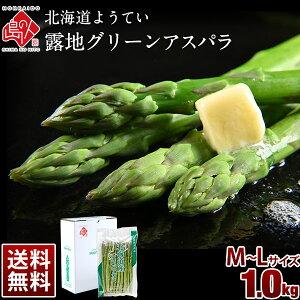 「収穫次第お届け」北海道 ようてい 露地グリーンアスパラ(M-Lサイズ) 1kg(500g×2)【送料無料】北海道 お取り寄せグルメ アスパラガス 食品 食べ物 ギフト 食べ物 贈り物