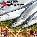 【早期予約販売】【9月上旬以降お届け】さんま 特大 送料無料【鮮サンマ 2.0kg(約13尾)】【特大1尾130g〜150g】北海道…