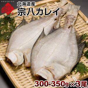 カレイ 北海道産 宗八鰈(そうはちカレイ)300-350g 3尾セット旨さの秘密は自慢の【利尻昆布】昆布干物 北海道 お土産 お取り寄せ 食品 食べ物 魚【元気いただきますプロジェクト】【送料無料