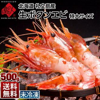 Rebun and Rishiri Island students have extra large 500 g prawns Botan shrimp Hokkaido souvenir sweets gift