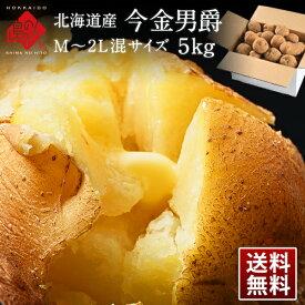 北海道産 今金男爵 M〜2L混サイズ 5kg【送料無料】