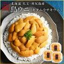 【ご予約受付中】うに ウニ 生キタムラサキウニ 270g(90g×3パック)日本最北の島 北海道 礼文・利尻島産【送料無料】…