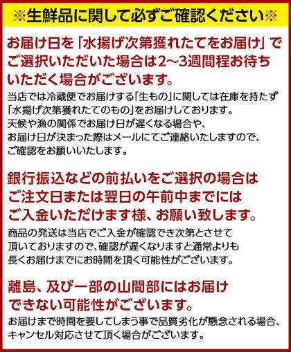【無添加】生ウニキタムラサキウニ90g塩水パック礼文・利尻島産2セットで送料無料【配達日指定不可】