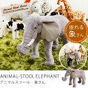 スツール チェアー 1P 1人掛け 動物 ANIMAL-STOOL 象さん【楽ギフ_包装】 【あす楽対応】