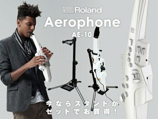 Roland Aerophone AE-10G グラファイト・ブラック【数量限定スタンド付き!】【p10】