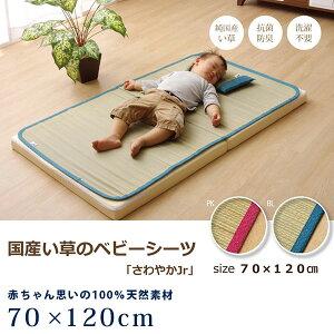 赤ちゃん用 子ども用 シーツ 寝ござ ご座 国産 い草 70×120cm 長方形 ベビー キッズ ジュニア