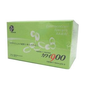 カワイ900 乳酸球菌カワイ株900mg含有/包【カワイ900を2個以上ご購入でクオカード1000円分プレゼント付】