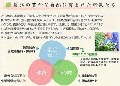 湖東発/乳酸菌の恵み近江五色漬/塩漬/近江農産