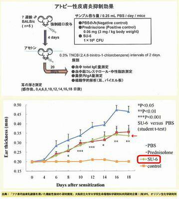 滋賀発/すし乳酸菌SU-6/オリジン生化学研究所