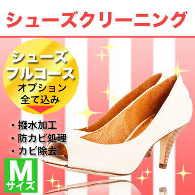 シューズのフルコース Mサイズ(〜24cm)革靴 手入れ 除菌 消臭 靴 クツ 丸洗い 補修 色かけ 色補修 補色 クリーニング オプション全て込み