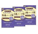 【3箱セット】快通ハーブ粒+乳酸菌 120粒 ナチュラルウェーブ 植物性サプリメント 日本製 ハーブ粒 快適 かいつう【機…