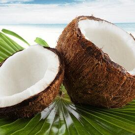 トロピカルな空間を楽しめるココナッツの香り。ココナッツ -Coconut-10mlハイグレード アロマクラフト用 フレグランスオイル(手作り石鹸 香水 キャンドル バスボム サシェ / ディフューザー 加湿器 ネブライザー用)