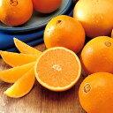 みずみずしいフレッシュなオレンジの香り。オレンジ -Orange-10mlハイグレード アロマクラフト用 フレグランスオイル(手作り石鹸 香水 キャンドル バスボム サシェ / ディフューザー 加湿器