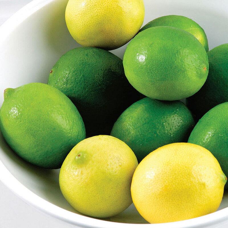 甘酸っぱいレモンとライムの香り。レモン&ライム -Lemon & Lime-10mlハイグレード アロマクラフト用 フレグランスオイル(手作り石鹸 香水 キャンドル バスボム サシェ / ディフューザー 加湿器 ネブライザー用)