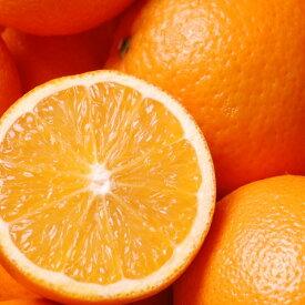 太陽をたっぷり浴びた、ブラジルのオレンジ。オレンジスイート(Orange Sweet)10ml天然100%のエッセンシャルオイル(精油)(手作り石鹸 香水 バスボム バスソルト アロマペンダント サシェ ディフューザー用)
