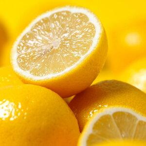 高品質なイタリア産のレモンオイル。レモン(Lemon)10ml天然100%のエッセンシャルオイル(精油)(手作り石鹸 香水 バスボム バスソルト アロマペンダント サシェ ディフューザー用)