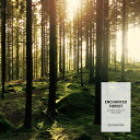 【10ml】フレッシュな深緑の香り エンチャンテッドフォレストフレグランスオイル(ボディセーフタイプ アロマクラフト用)Enchanted Forest Oil /手作り石鹸 香水 バスボム ルームスプレー サシェ ディフューザー 加湿器 ネブライザー などに