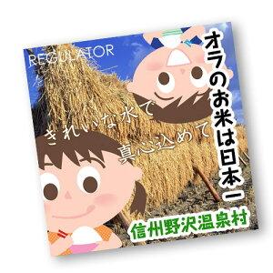 【野沢温泉村/おらのお米は日本一】【2020年度米】長野県産コシヒカリ (白米) 10kg