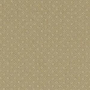 ●取寄品●【クラフト紙】[10枚入り](ロープスイング)12インチ(約30cm×30cm)/表面はエンボスドットのテクスチャー/厚めの紙でカードメーキングやスクラップブッキングなどの台紙やマッ