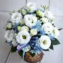 【送料無料】白トルコキキョウとデルフィニュームのアレンジメントフラワー 生花 アレンジメント 誕生日 プレゼント …