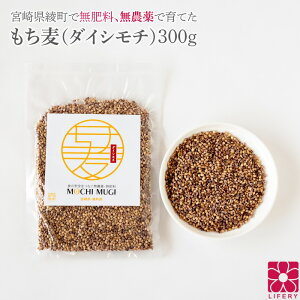 もち麦 送料無料 無農薬 無肥料 国産 ダイシモチ 300g レジスタントスターチ もち麦ごはん パック 雑穀 もちむぎ ベータグルカン βグルカン β-グルカン 食物繊維 農薬不使用 無農薬栽培 グル