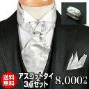 アスコットタイ アスコットストール ペイズリー チーフセット シルバー グレー シルク100% ポケットチーフ&リング付…
