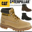 Caterpillar-colo-4