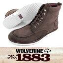 Wolverine-w05432