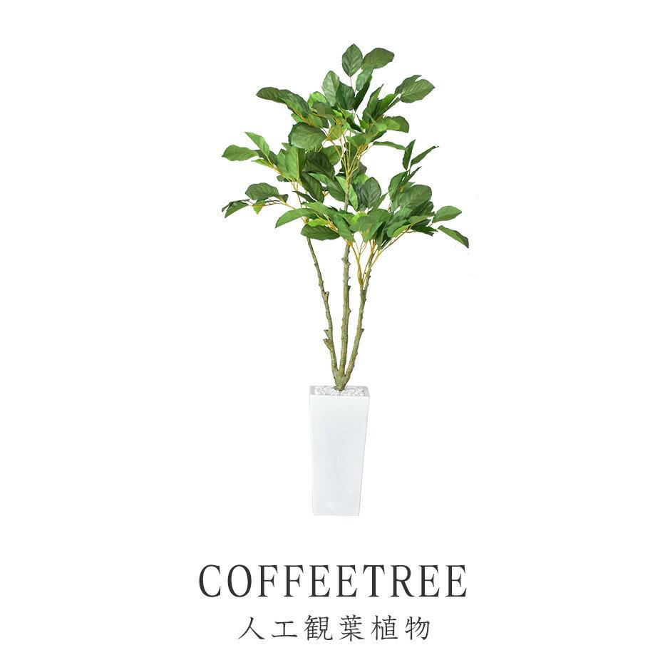【送料無料】人工観葉植物 光触媒 コーヒーツリー 水やり不要 インテリアグリーン 観葉植物 造花 【コーヒーツリー】