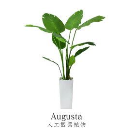 【送料無料 (一部地域除く)】 観葉植物 人工観葉植物 水やり不要 光触媒 インテリアグリーン フェイクグリーン オーガスタ 新生活応援