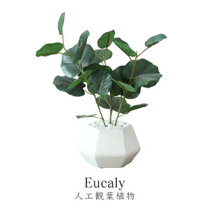 【ポイント5倍 6/20 0時-24時】観葉植物 人工観葉植物 フェイクグリーン ユーカリ 送料無料 父の日