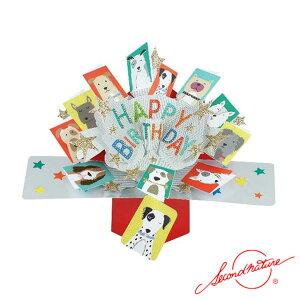 ポップアップカード ハッピーバースディ ドッグ【Second Nature】グリーティングカード 飛び出す メッセージカード 3D 立体的 POP UP Card 誕生日 Birthday バースデー バースデイ たんじょうび お祝