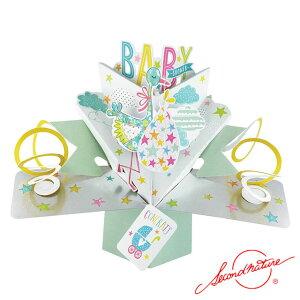 ポップアップカード ベビーシャワー【Second Nature】グリーティングカード 飛び出す メッセージカード POP UP 3Dカード Card 手紙 封筒付 出産祝い 妊娠 誕生日 コウノトリ #POP162