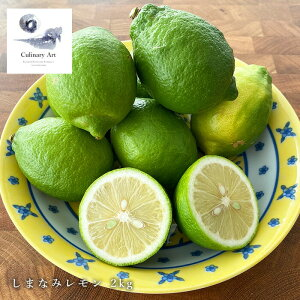 露地栽培 国産グリーンレモン 5kg ( 10〜12月 限定商品 ) 貴重な  国産 レモン 数量限定 エコレモン  減農薬 防腐剤 防カビ剤 ワックス不使用 れもん  檸檬  しまなみ