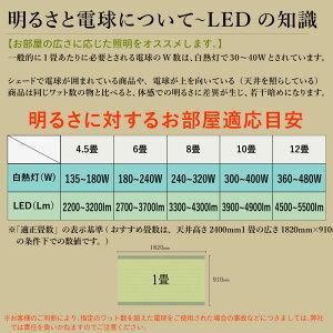 最大2000円OFFクーポン!LEDシーリングライト6灯シーリングライトスポットライト天井照明間接照明インテリア照明リビング照明6畳8畳ledライトおしゃれダイニング用食卓用リビング用居間用北欧LEDライトシーリングライトおしゃれ