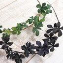 【人工植物】アスカ(asca) ミニシサスアイビーバイン H43cm 1本【葉材 フェイクグリーン 造花】