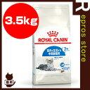 FHN インドア 7+ 3.5kg ロイヤルカナン▼g ペット フード キャット 猫 高齢 シニア 室内 7歳以上 フィーラインヘルスニュートリション