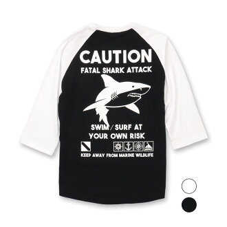[product targeted for Class two pieces] the 2P SHARK raglan sleeves 3/4T shirt list price: 4,212 yen