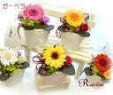 送料無料 プリザーブドフラワー ギフト「ガーベラ ポット CANDY」アレンジ誕生日 お祝 お見舞い 結婚祝】【あす楽対応…