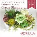 【ギフト】プリザーブドフラワーローズ×多肉植物(フェイク)[GreenPlants](寄せ植え)送料無料誕生日お祝い引越しプリザプリザード観葉グリーン【あす楽】【即日出荷】【バレンタイン】