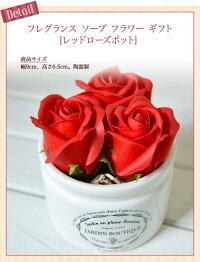 【ギフト】プリザーブドフラワーローズ×多肉植物(フェイク)[GreenPlants](寄せ植え)